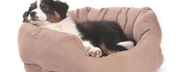 Schöne Hundebetten hochwertige hundebetten hundekissen wolters beeztees