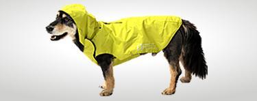 9052653986b47f Hundezubehör und Hundebedarf günstig online kaufen | Alles für Ihren ...