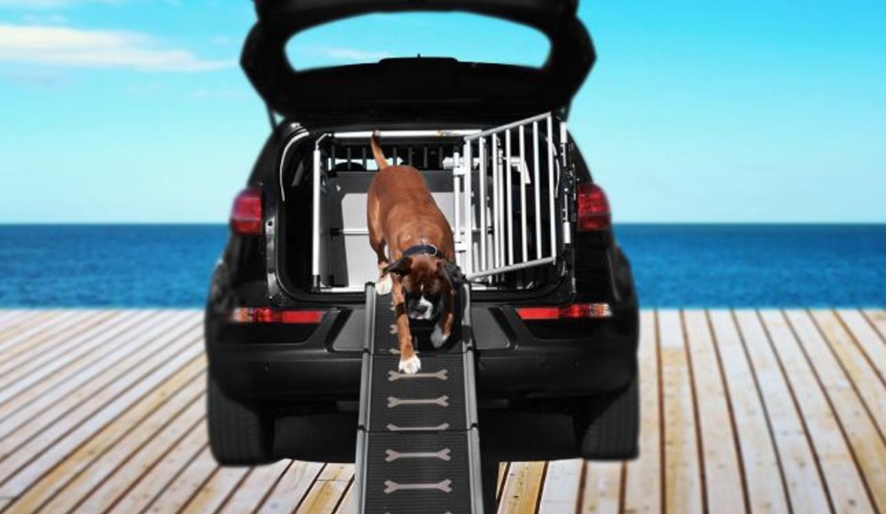 hundeboxen hundetransportboxen kennelboxen hunde. Black Bedroom Furniture Sets. Home Design Ideas