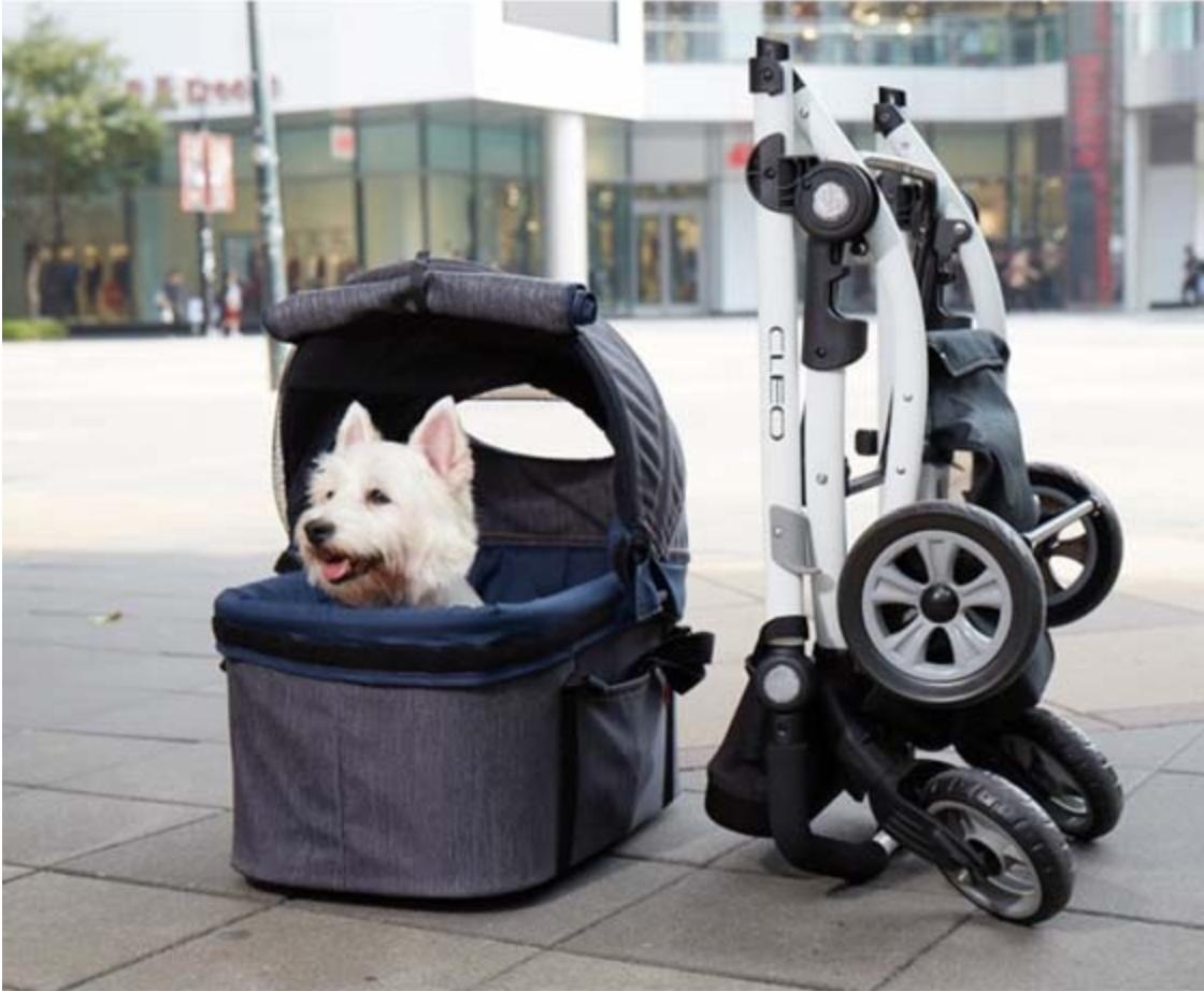 Gute Aussicht im Pet Stroller