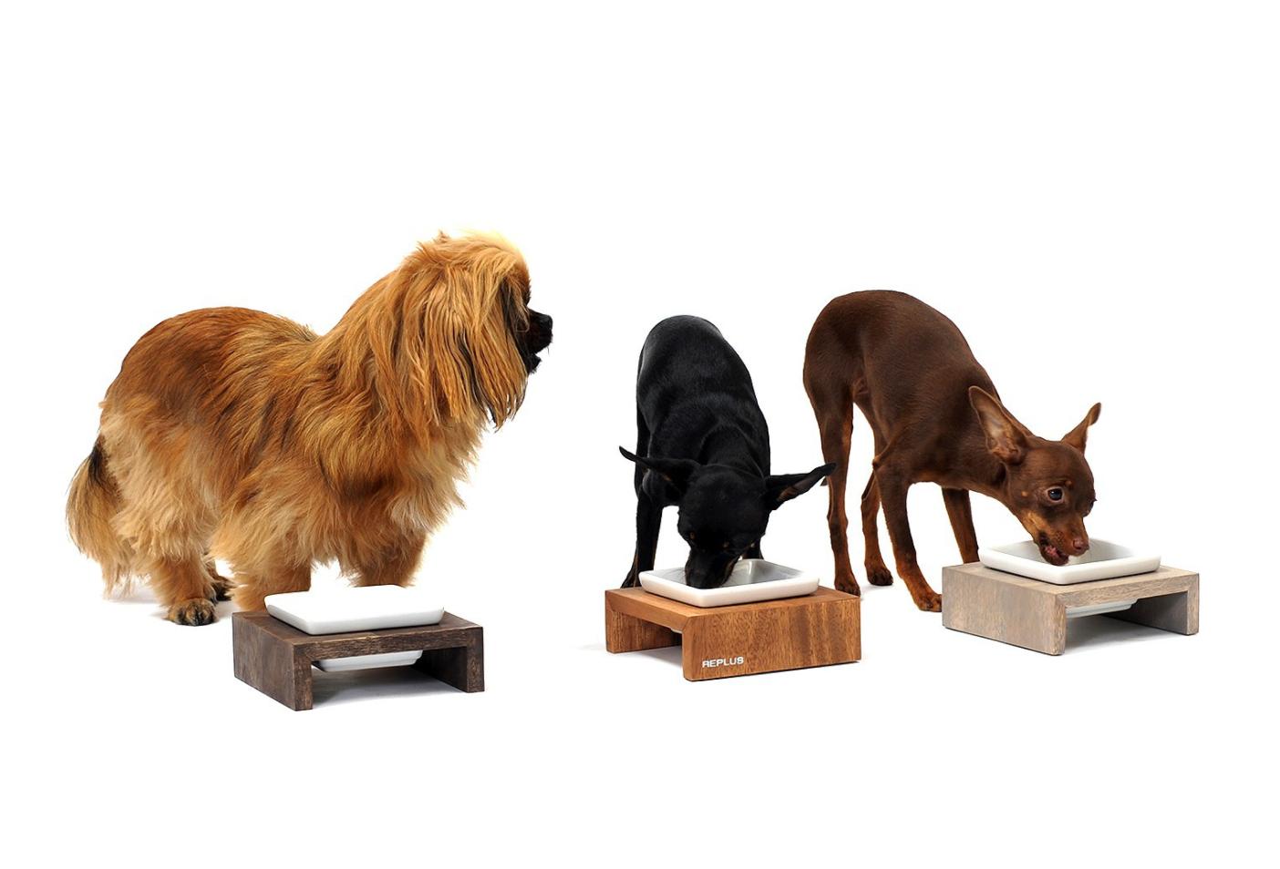 hundenapf aus holz & keramik, hunde futterbar, hunde futterstation