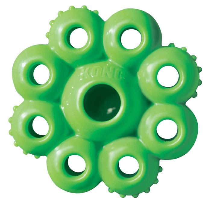 Kong Quest Dog Toys